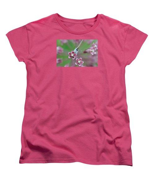 Taste Women's T-Shirt (Standard Cut) by Janet Rockburn