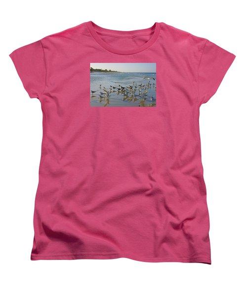 Terns And Seagulls On The Beach In Naples, Fl Women's T-Shirt (Standard Cut)