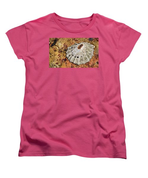 The Common Limpet Women's T-Shirt (Standard Cut) by Werner Lehmann