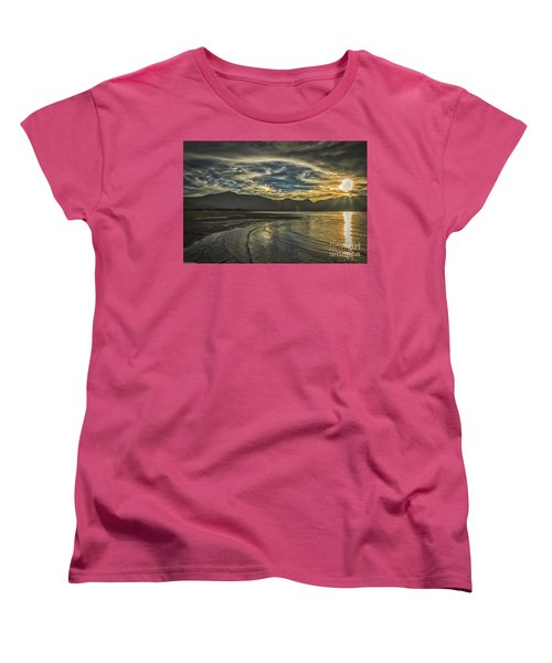 The Dog Days Of Summer Women's T-Shirt (Standard Cut) by Mitch Shindelbower