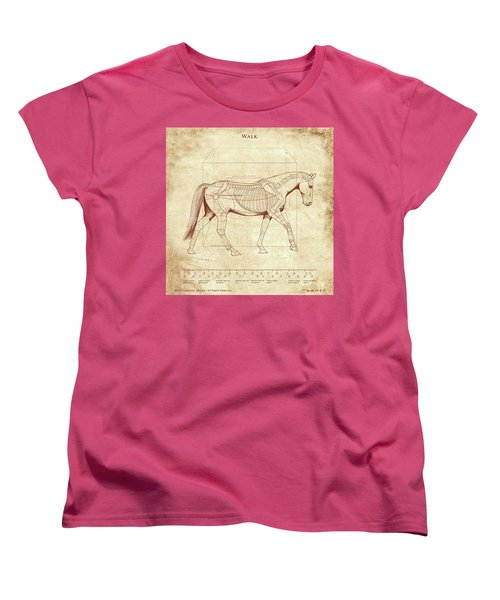 The Horse's Walk Revealed Women's T-Shirt (Standard Cut) by Catherine Twomey