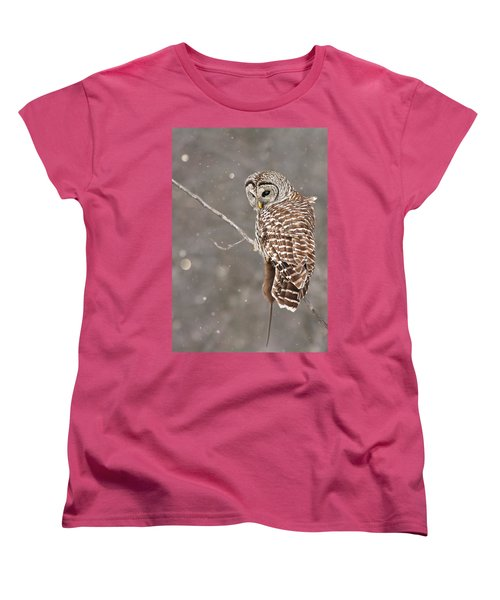 The Silent Hunter Women's T-Shirt (Standard Cut) by Mircea Costina Photography
