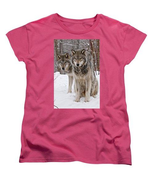 Timber Wolves In Winter Women's T-Shirt (Standard Cut) by Michael Cummings