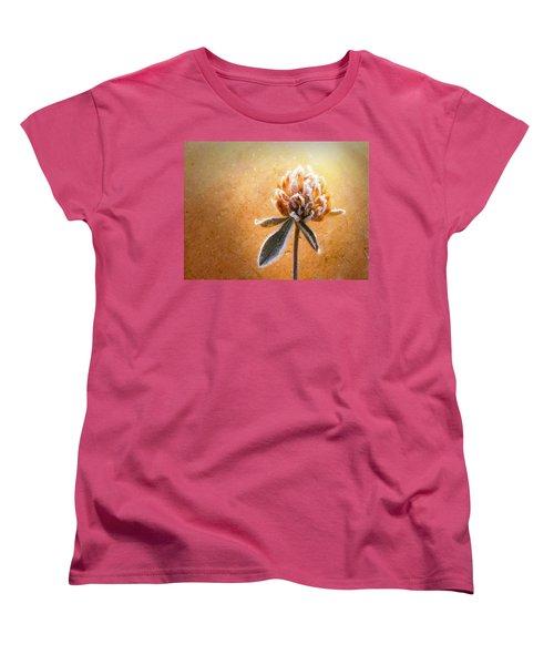 Torcia Women's T-Shirt (Standard Cut) by Greg Collins