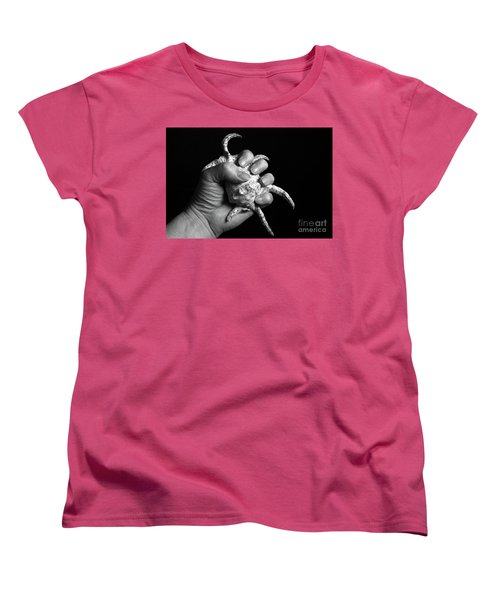 Women's T-Shirt (Standard Cut) featuring the photograph Touch Series - Shells by Nicholas Burningham