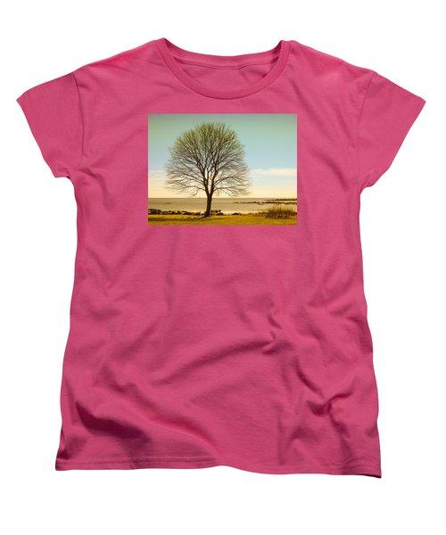 Tree At New Castle Common Women's T-Shirt (Standard Cut) by Nancy De Flon