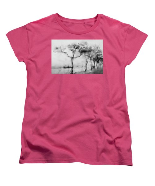 Trees Through The Window Women's T-Shirt (Standard Cut) by Celso Bressan
