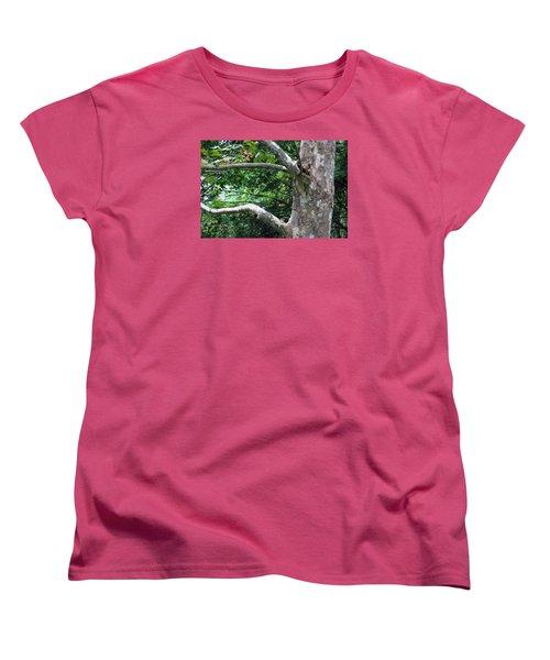 Women's T-Shirt (Standard Cut) featuring the photograph Untiled by Dorin Adrian Berbier
