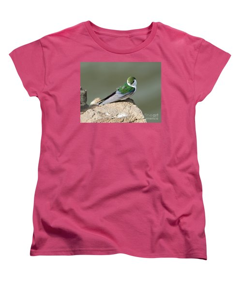 Violet-green Swallow Women's T-Shirt (Standard Cut) by Mike Dawson
