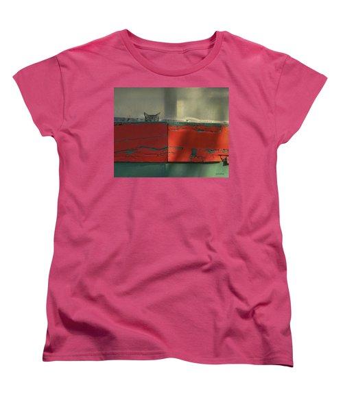 Watchful Cat Women's T-Shirt (Standard Cut) by Allen Sheffield
