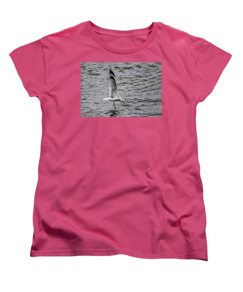 Water Tester Women's T-Shirt (Standard Cut)