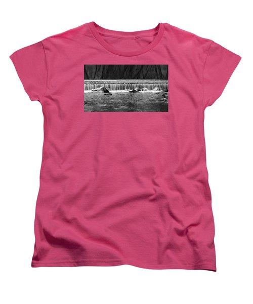 Waterfall004 Women's T-Shirt (Standard Cut) by Dorin Adrian Berbier