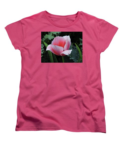 Welcome Tulip Women's T-Shirt (Standard Cut) by Penny Lisowski