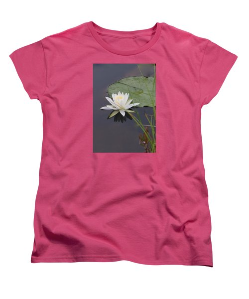 White Water Lotus Women's T-Shirt (Standard Cut) by Debra     Vatalaro