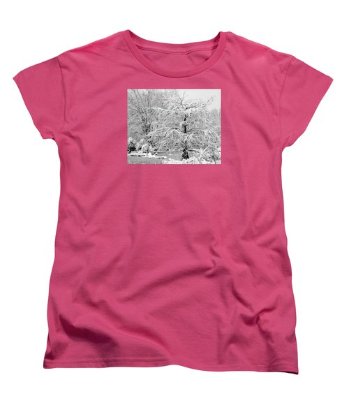 Whiteout In The Wetlands Women's T-Shirt (Standard Cut) by John Harding