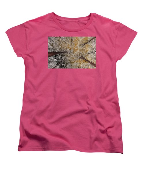 Women's T-Shirt (Standard Cut) featuring the photograph Whiteout by Tony Beck