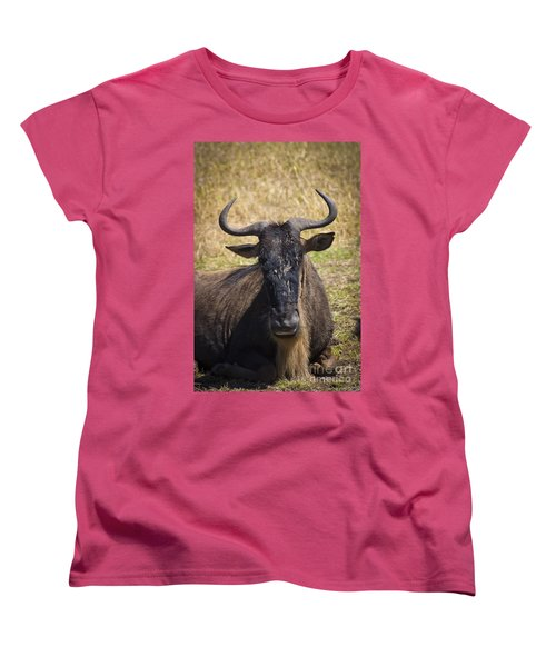 Wildebeest Taking A Break Women's T-Shirt (Standard Cut) by Darcy Michaelchuk