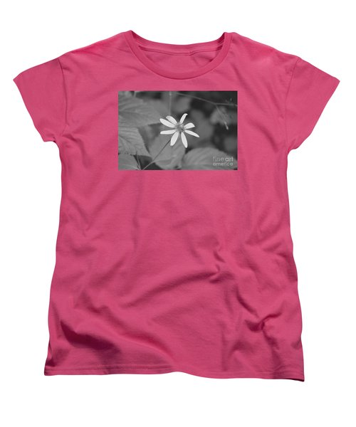 Wildflower Women's T-Shirt (Standard Cut) by Eric Liller