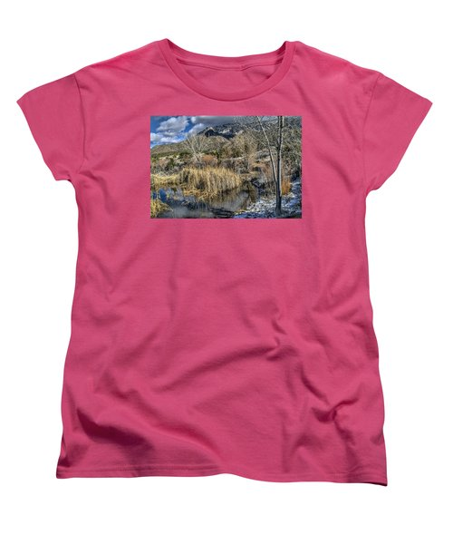 Wildlife Water Hole Women's T-Shirt (Standard Cut) by Alan Toepfer