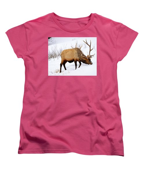 Winter Bull Women's T-Shirt (Standard Cut) by Greg Norrell