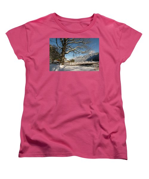 Winter Horseshoe Women's T-Shirt (Standard Cut)
