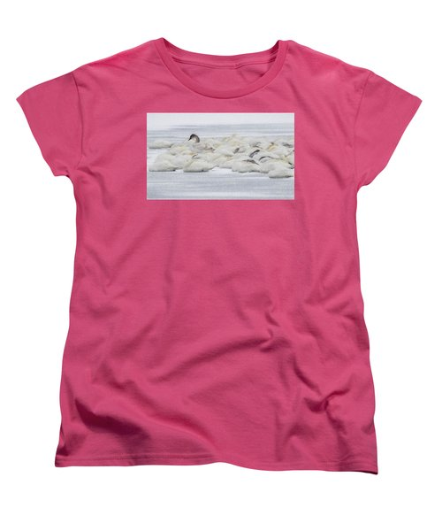 Women's T-Shirt (Standard Cut) featuring the photograph Winter by Kelly Marquardt