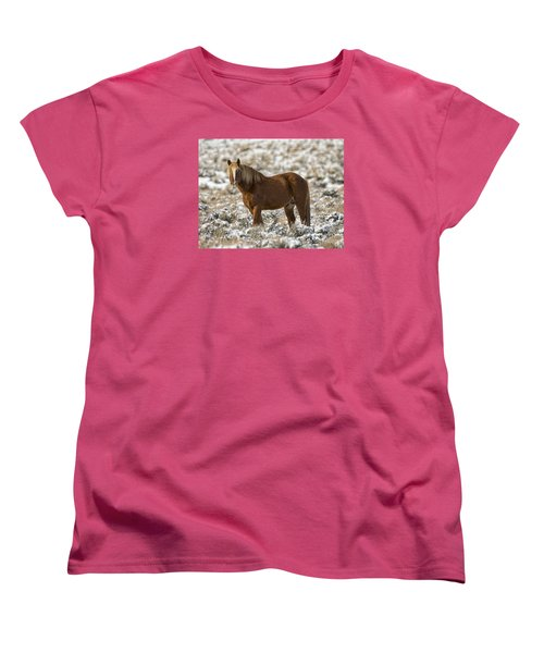 Winter Stallion Women's T-Shirt (Standard Cut) by Mitch Shindelbower