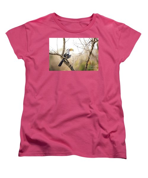 Yellow-billed Hornbill Sitting In A Tree.  Women's T-Shirt (Standard Cut) by Jane Rix