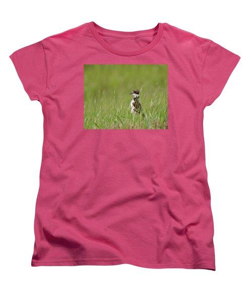 Young Killdeer In Grass Women's T-Shirt (Standard Cut) by Mark Duffy