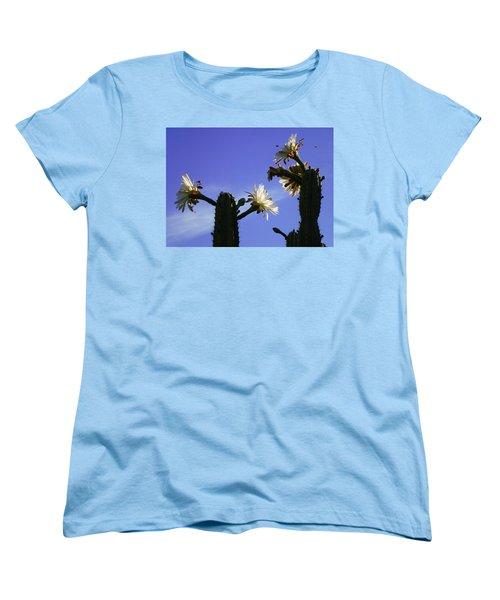 Flowering Cactus 4 Women's T-Shirt (Standard Cut) by Mariusz Kula
