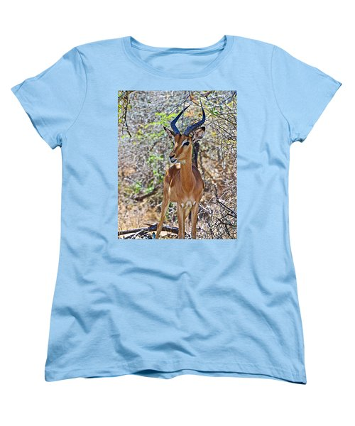 Male Impala In Kruger National Park-south Africa   Women's T-Shirt (Standard Cut) by Ruth Hager