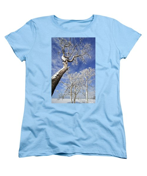 Women's T-Shirt (Standard Cut) featuring the photograph 130201p343 by Arterra Picture Library