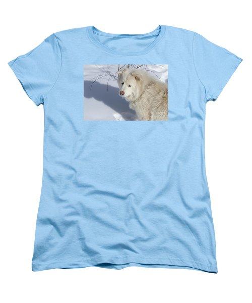Women's T-Shirt (Standard Cut) featuring the photograph Snowy Nose by Fiona Kennard