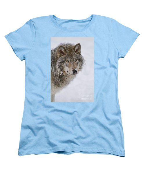 Timber Wolf Pictures Women's T-Shirt (Standard Cut) by Wolves Only