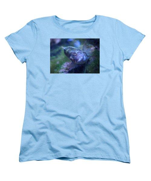 Women's T-Shirt (Standard Cut) featuring the photograph Redspotted Hawkfish  by Savannah Gibbs