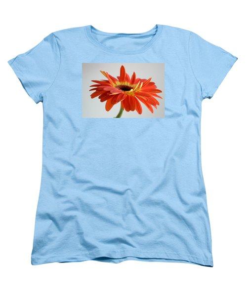 A Beautiful Dream Women's T-Shirt (Standard Cut) by Melanie Moraga