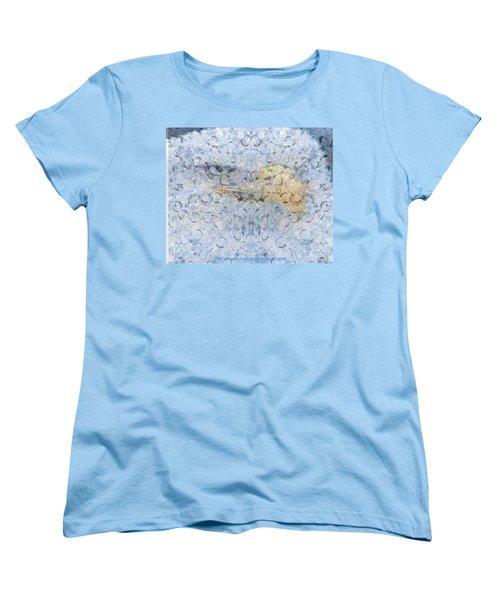 American Eagle Art Women's T-Shirt (Standard Cut)