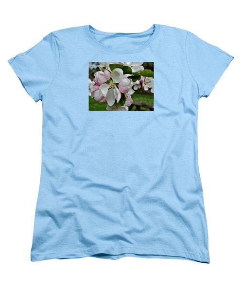 Apple Blossoms 2 Women's T-Shirt (Standard Cut) by VLee Watson