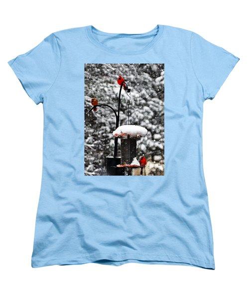 Backyard Winter Wonderland 2  Women's T-Shirt (Standard Cut)