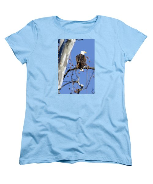 Bald Eagle Women's T-Shirt (Standard Cut) by David Lester