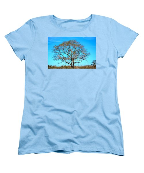 Women's T-Shirt (Standard Cut) featuring the photograph Beautiful Branching by Debra Martz