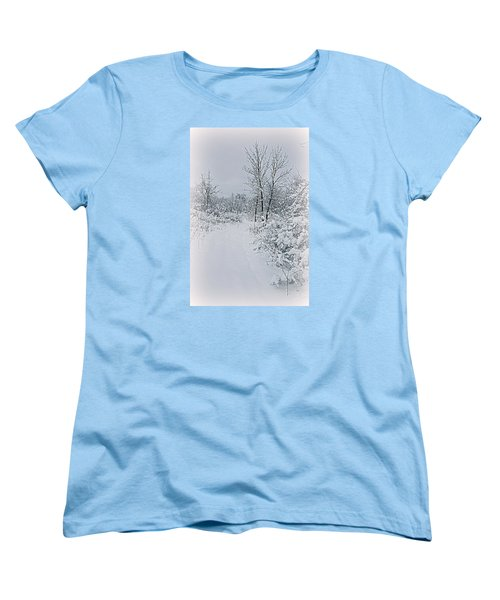 Beauty Of Winter Women's T-Shirt (Standard Cut) by Kay Novy