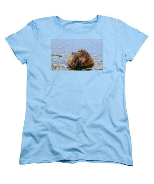 Beaver Portrait Women's T-Shirt (Standard Cut) by Dan Sproul