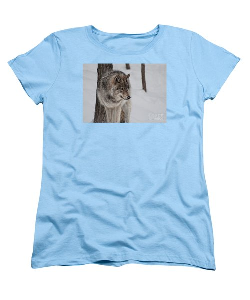 Big Bad Wolf Women's T-Shirt (Standard Cut)