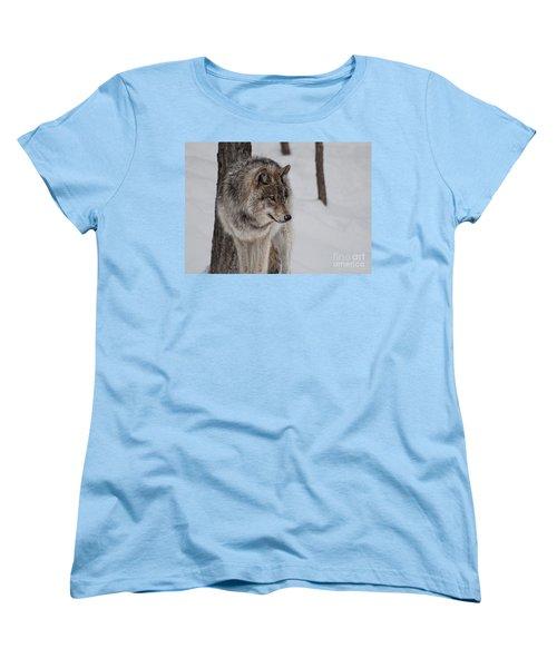 Women's T-Shirt (Standard Cut) featuring the photograph Big Bad Wolf by Bianca Nadeau