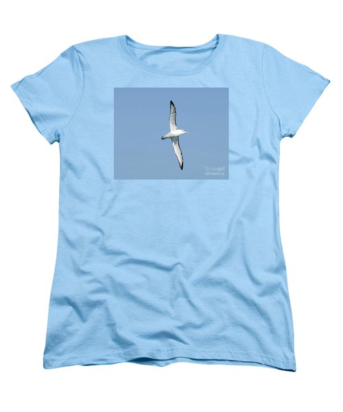 Arbornos Flying In New Zealand Women's T-Shirt (Standard Cut)