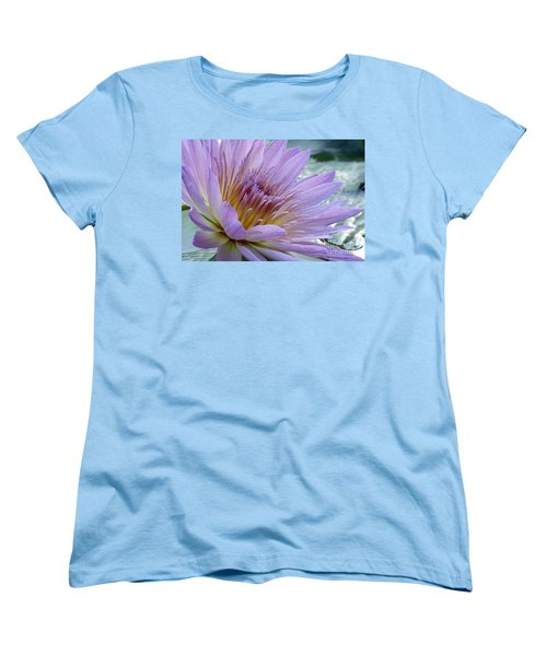 Bloom's Blush Women's T-Shirt (Standard Cut) by Alycia Christine