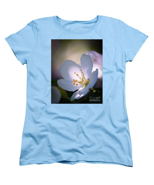 Blossom In The Sun Women's T-Shirt (Standard Cut) by David Perry Lawrence