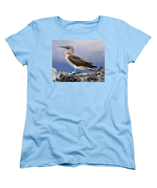 Blue-footed Booby Women's T-Shirt (Standard Cut) by Tony Beck
