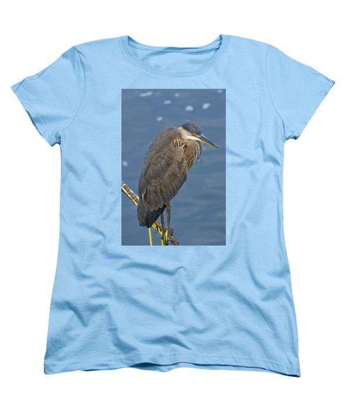 Blue Herron Women's T-Shirt (Standard Cut) by Jim Thompson